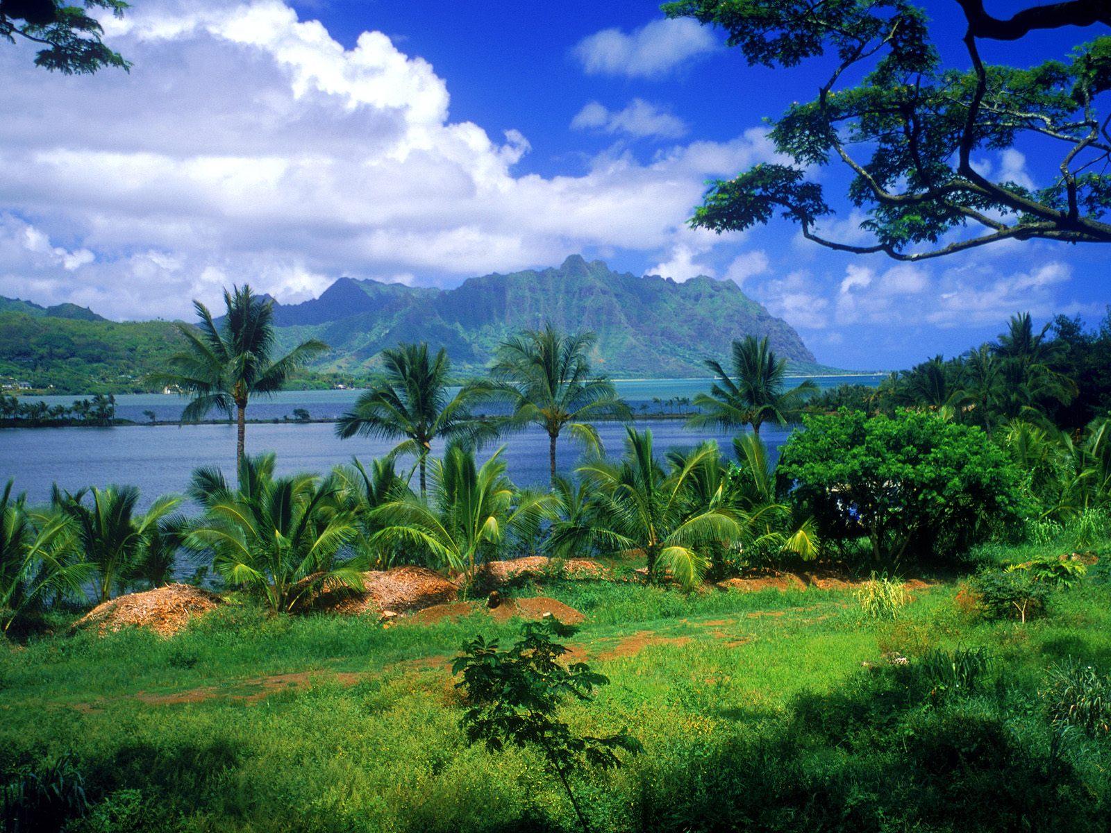 top ten best destination wedding places